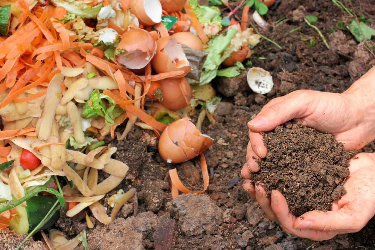 compost composteur terre déchets organiques