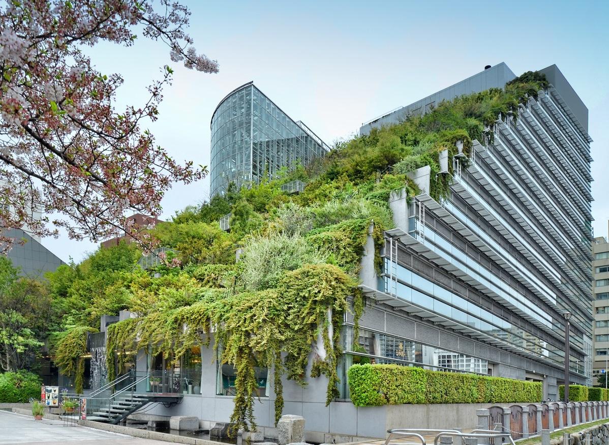 Japon toit végétal mur végétalisé végétalisation ville urbain immeuble