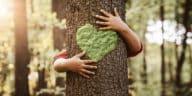 réduire béton enfant embrasser arbre tronc coeur protéger nature forêt