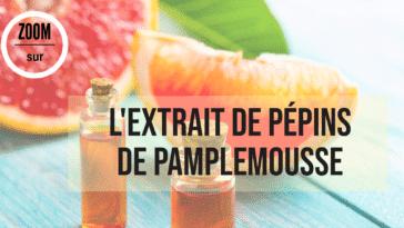 extrait pépins de pamplemousse bienfaits utilisation agrume