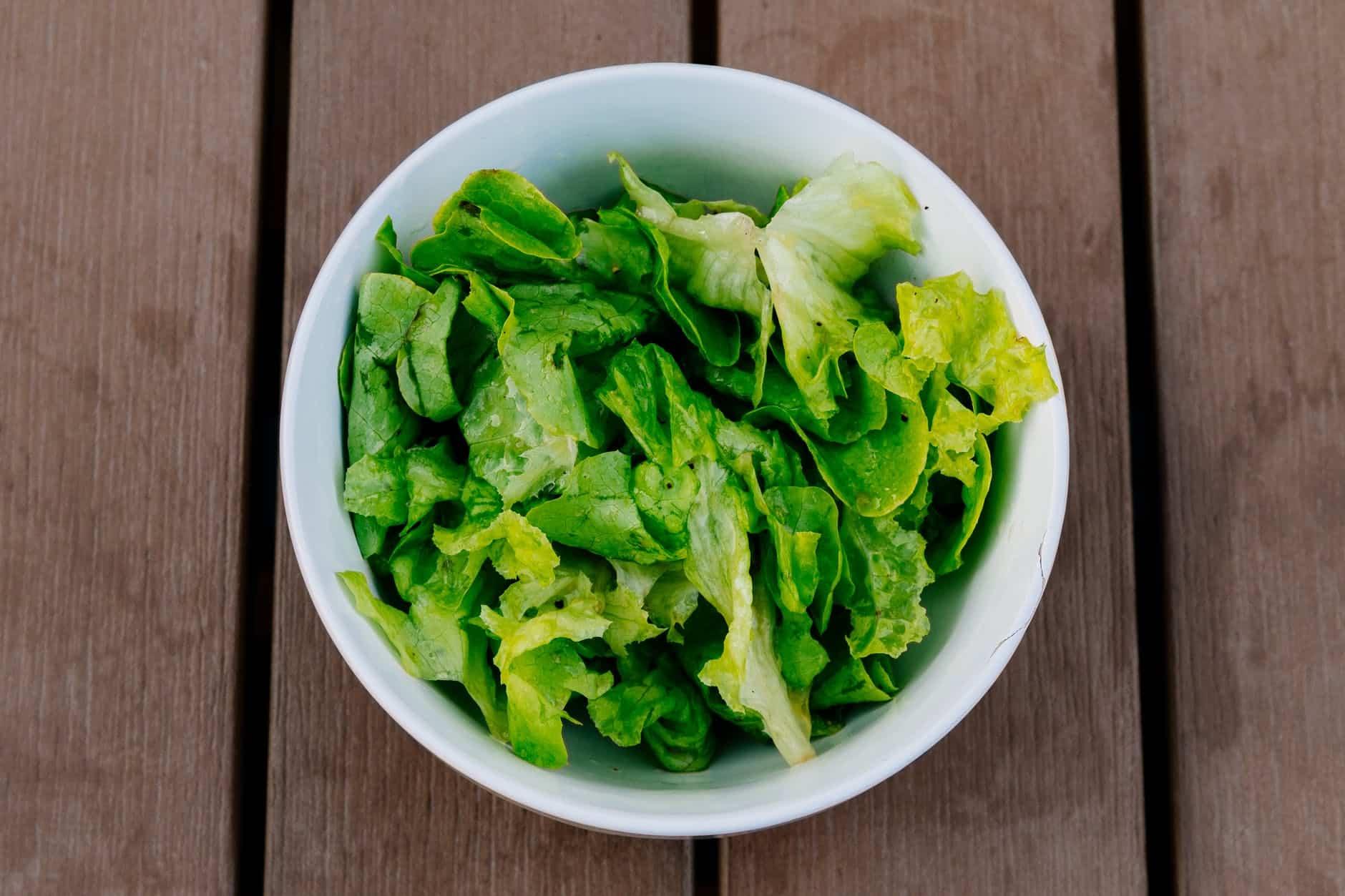 salade verte assiette laitue