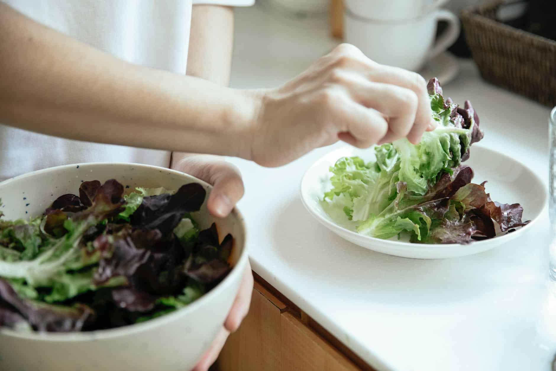 salade verte frisée astuces conservation