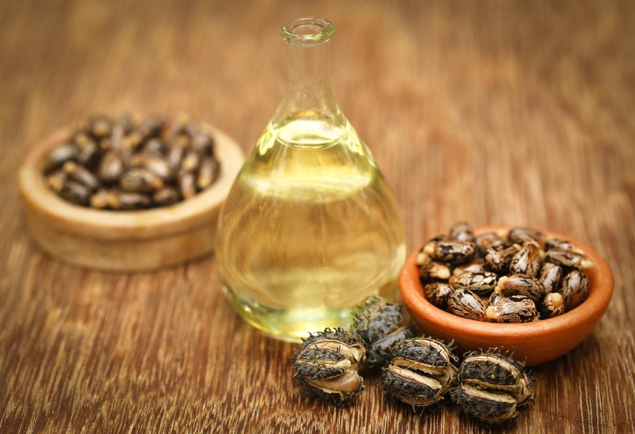 Huile ricin bogues végétale beauté santé bienfaits Castor oil