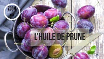 huile végétale prune noyaux fruit